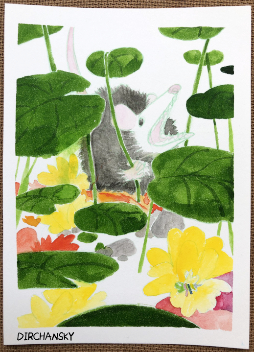 A photo of a painting of a possum sitting amongst leaves, rocks, and flowers.