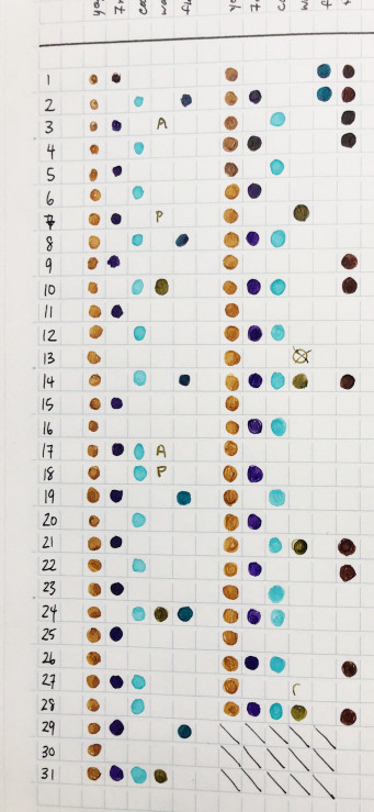 photo of a dot-based habit tracking system. The habits are in the top row, while the days are on the left column