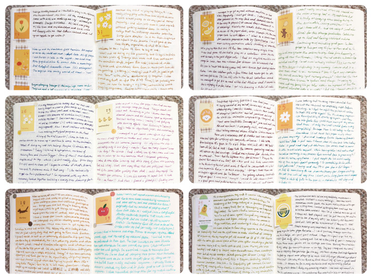 photo collage of several journal spreads, written in colourful ink